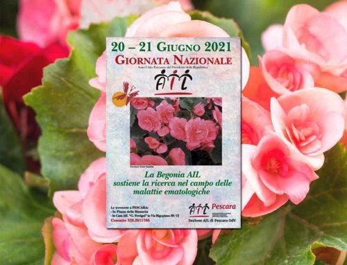 Una begonia per la Giornata nazionale Ail. Volontari in piazza a Pescara